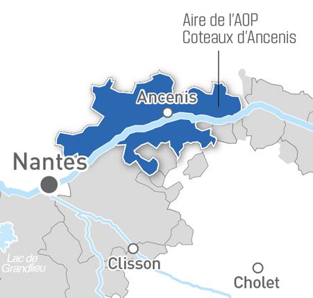 Carte Coteaux d'Ancenis