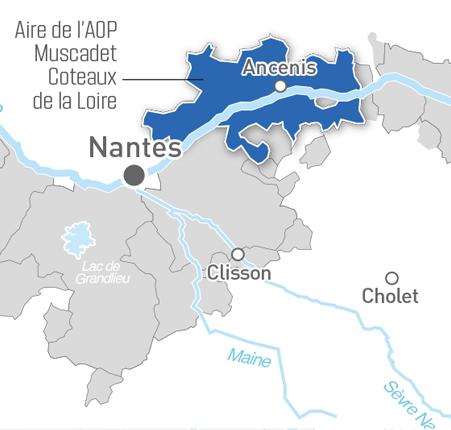 Map of Muscadet Coteaux de La Loire AOP
