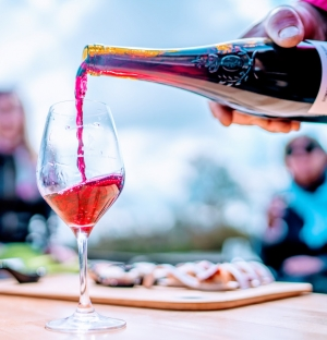 site officiel des vins du val de loire vignoble vins aoc histoire actualit s route. Black Bedroom Furniture Sets. Home Design Ideas