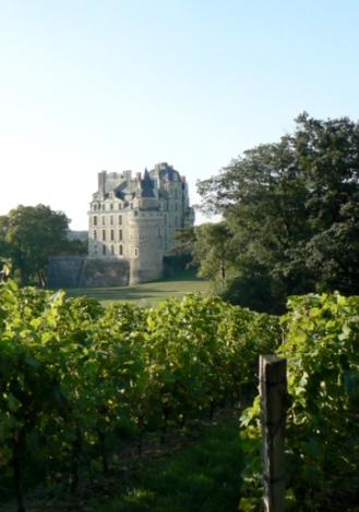 vin val de loire anjou villages brissac