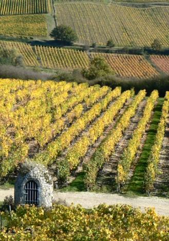 vin val de loire coteaux du layon villages